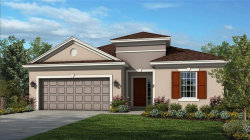 Photo of 1025 Timberview Road, CLERMONT, FL 34715 (MLS # O5826573)
