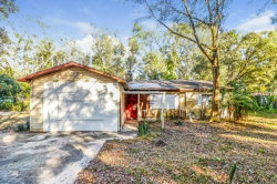 Photo of 1824 Bronson Place, ODESSA, FL 33556 (MLS # O5826973)