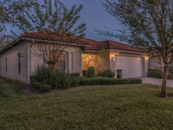 Photo of 2811 Roccella Court, KISSIMMEE, FL 34747 (MLS # O5830804)