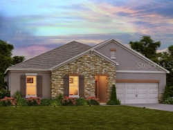 Photo of 4801 Butler National Drive, WESLEY CHAPEL, FL 33543 (MLS # O5837625)