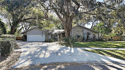 Photo of 2103 Doefield Court, VALRICO, FL 33596 (MLS # O5838394)