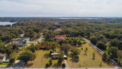 Photo of 9956 8th Street, GOTHA, FL 34734 (MLS # O5841192)