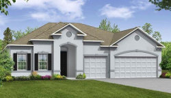 Photo of 375 Briarbrook Lane, HAINES CITY, FL 33844 (MLS # O5853494)