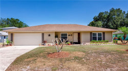 Photo of 1925 Bear View Drive, APOPKA, FL 32703 (MLS # O5855175)