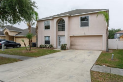 Photo of 10421 Fly Fishing Street, RIVERVIEW, FL 33569 (MLS # O5863983)