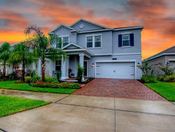 Photo of 10085 Lovegrass Lane, ORLANDO, FL 32832 (MLS # O5869316)