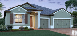 Photo of 13165 Serene Valley Drive, CLERMONT, FL 34711 (MLS # O5883440)