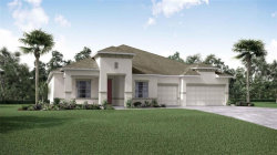 Photo of 1905 Twin Rivers Trail, PARRISH, FL 34219 (MLS # O5891405)