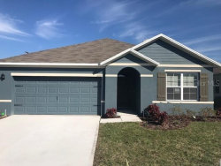 Photo of 361 Summershore Drive, AUBURNDALE, FL 33823 (MLS # O5899629)
