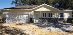 Photo of 1312 Gilliam Drive, AUBURNDALE, FL 33823 (MLS # O5901948)