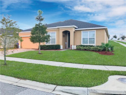 Photo of 660 Black Eagle Drive, GROVELAND, FL 34736 (MLS # O5902002)