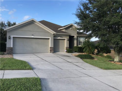 Photo of 1888 Sanderling Drive, CLERMONT, FL 34711 (MLS # O5902246)