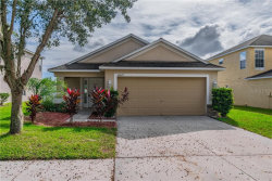 Photo of 10615 Shady Preserve Drive, RIVERVIEW, FL 33579 (MLS # O5907302)