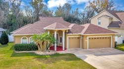 Photo of 2007 River Crossing Drive, VALRICO, FL 33596 (MLS # O5916780)