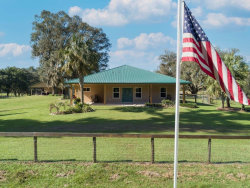 Photo of 11030 Nw 160th Avenue, MORRISTON, FL 32668 (MLS # OM612240)