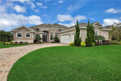 Photo of 1821 Highlands In The Woods Drive, LAKELAND, FL 33813 (MLS # P4908792)