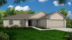 Photo of 249 Whispering Oaks Way, AUBURNDALE, FL 33823 (MLS # R4903803)