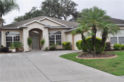 Photo of 2346 Meadow Oak Circle, KISSIMMEE, FL 34746 (MLS # S5001873)