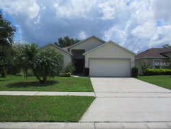Photo of 4791 Preserve Boulevard, SAINT CLOUD, FL 34772 (MLS # S5004212)