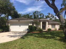 Photo of 3966 Hickory Tree Road, SAINT CLOUD, FL 34772 (MLS # S5004511)