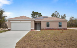 Photo of 201 Begonia Place, POINCIANA, FL 34759 (MLS # S5005082)
