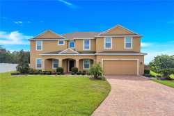 Photo of 3003 Amalfi Drive, ORLANDO, FL 32820 (MLS # S5007453)