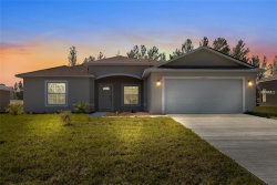 Photo of 307 Puffer Court, POINCIANA, FL 34759 (MLS # S5016415)