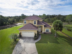 Photo of 412 Mallard Way, POINCIANA, FL 34759 (MLS # S5025884)