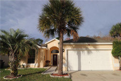 Photo of 1706 Bridgeview Circle, ORLANDO, FL 32824 (MLS # S5027909)