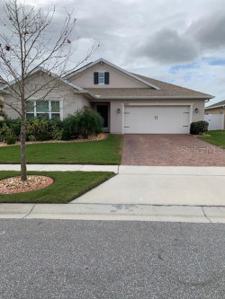 Photo of 2505 Addison Creek Drive, KISSIMMEE, FL 34758 (MLS # S5028982)