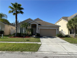 Photo of 14256 Wistful Loop, ORLANDO, FL 32824 (MLS # S5030567)
