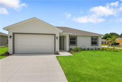 Photo of 2936 Eagle Nest View Drive, WINTER HAVEN, FL 33881 (MLS # S5034532)
