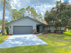 Photo of 14414 Winterset Drive, ORLANDO, FL 32832 (MLS # S5038389)