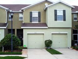 Photo of 8933 Turnstone Haven Place, TAMPA, FL 33619 (MLS # T2745434)