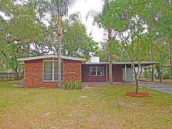 Photo of 410 Dunedin Avenue, TEMPLE TERRACE, FL 33617 (MLS # T2822041)
