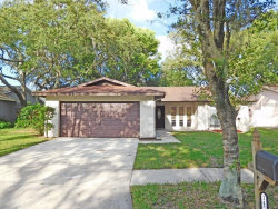 Photo of 14707 Tall Tree Drive, LUTZ, FL 33559 (MLS # T2831061)