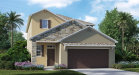 Photo of 21433 Wistful Yearn Drive, LAND O LAKES, FL 34637 (MLS # T2921113)