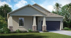 Photo of 10002 Ivory Drive, RIVERVIEW, FL 33579 (MLS # T2936218)