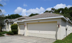 Photo of 1924 Rutherford Drive, DOVER, FL 33527 (MLS # T3101529)