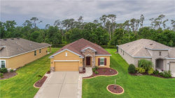 Photo of 7719 110th Avenue E, PARRISH, FL 34219 (MLS # T3102436)