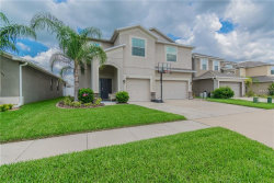 Photo of 3686 Morgons Castle Court, LAND O LAKES, FL 34638 (MLS # T3108760)