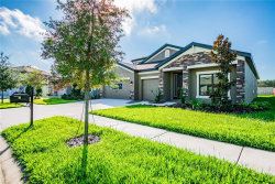 Photo of 8138 Bluevine Sky Drive, LAND O LAKES, FL 34637 (MLS # T3109042)