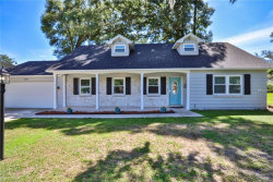 Photo of 509 E Hilda Drive, BRANDON, FL 33510 (MLS # T3109138)