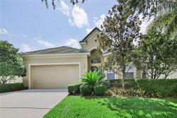 Photo of 13225 Tradition Drive, DADE CITY, FL 33525 (MLS # T3109592)