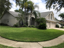 Photo of 10202 Thicket Point Way, TAMPA, FL 33647 (MLS # T3109655)
