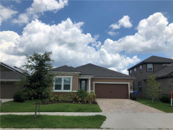 Photo of 12314 Eagle Swoop Place, RIVERVIEW, FL 33579 (MLS # T3113458)