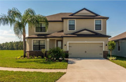 Photo of 11847 Valhalla Woods Drive, RIVERVIEW, FL 33579 (MLS # T3113856)