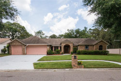 Photo of 502 Pinewalk Drive, BRANDON, FL 33510 (MLS # T3114257)