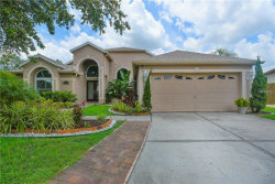 Photo of 1111 English Bluffs Court, BRANDON, FL 33511 (MLS # T3114361)