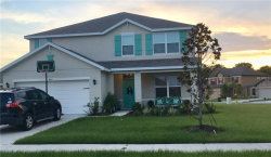 Photo of 4031 Willow Walk Drive, PALMETTO, FL 34221 (MLS # T3116785)